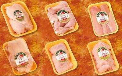 Фотографии пищевые продукты производителя 2008